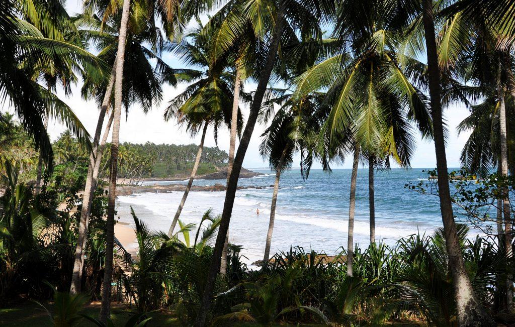 Sri Lanka Opener 005 2000px