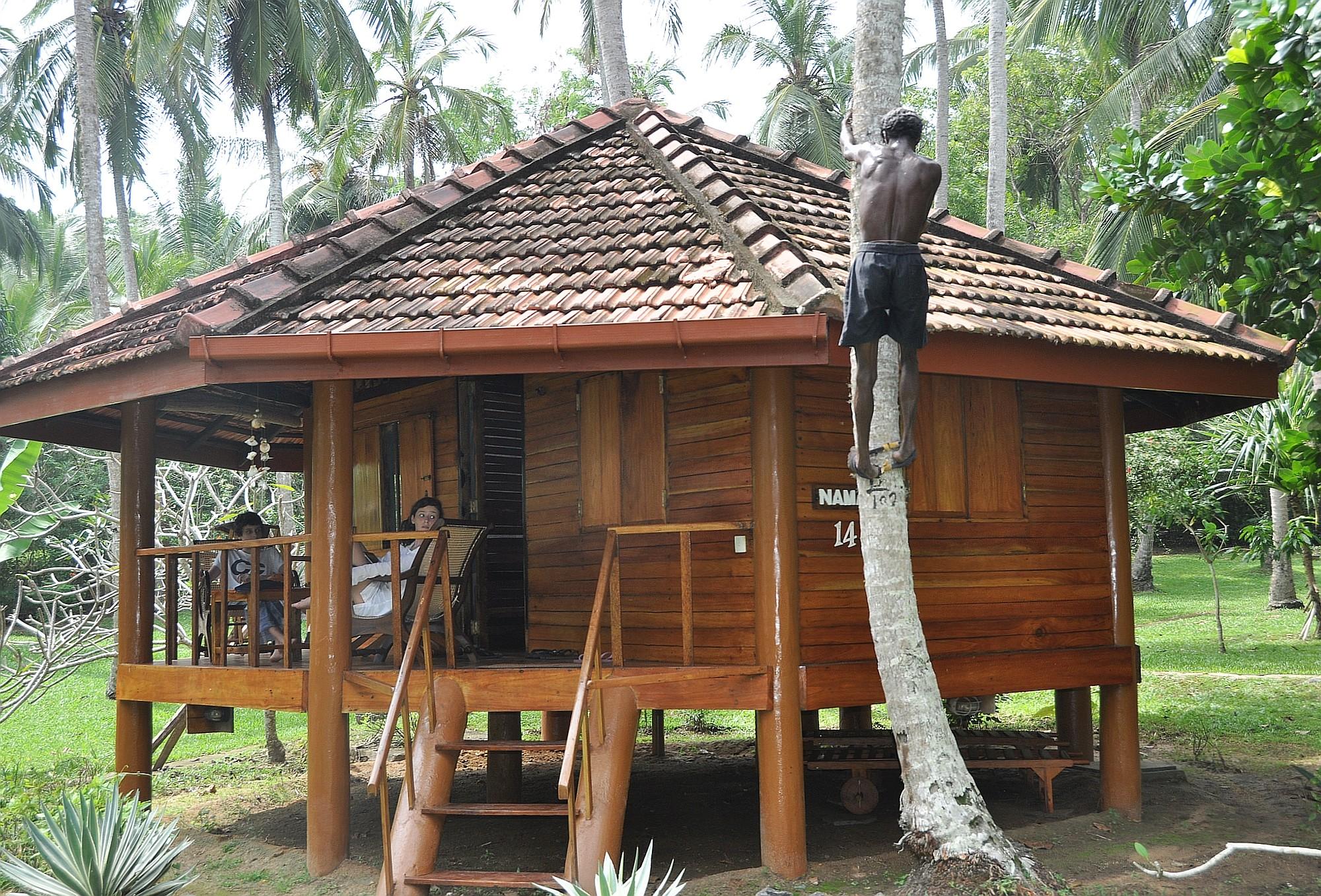 Sri Lanka Opener 009 2000px