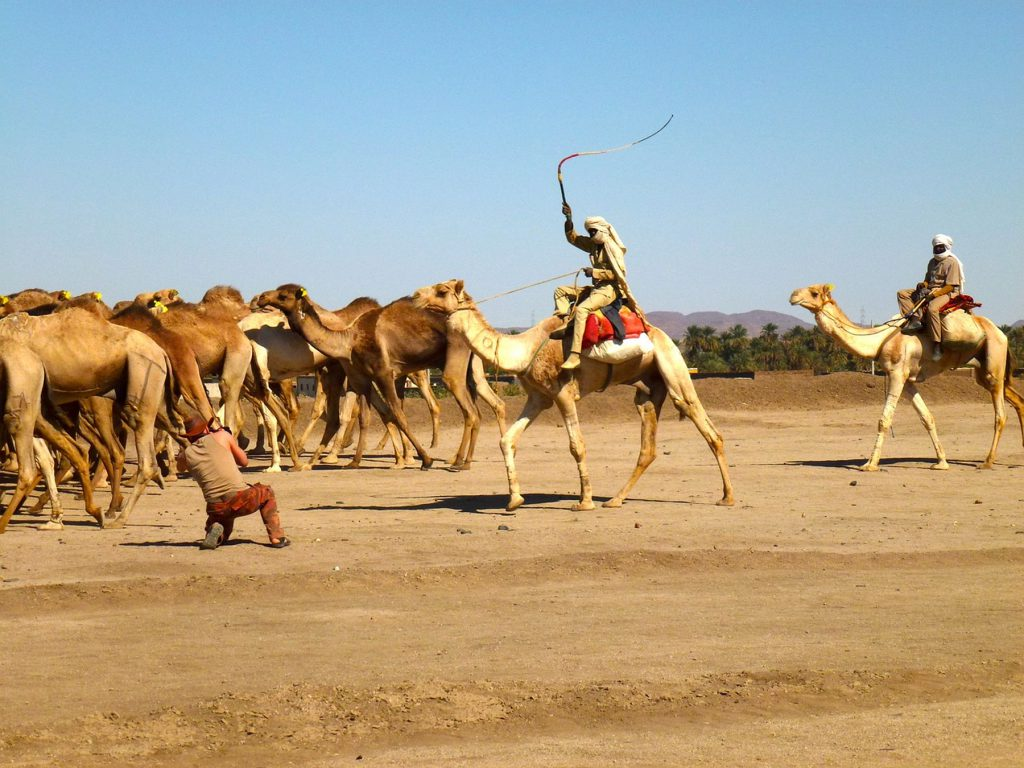 Sudan 04 2000px
