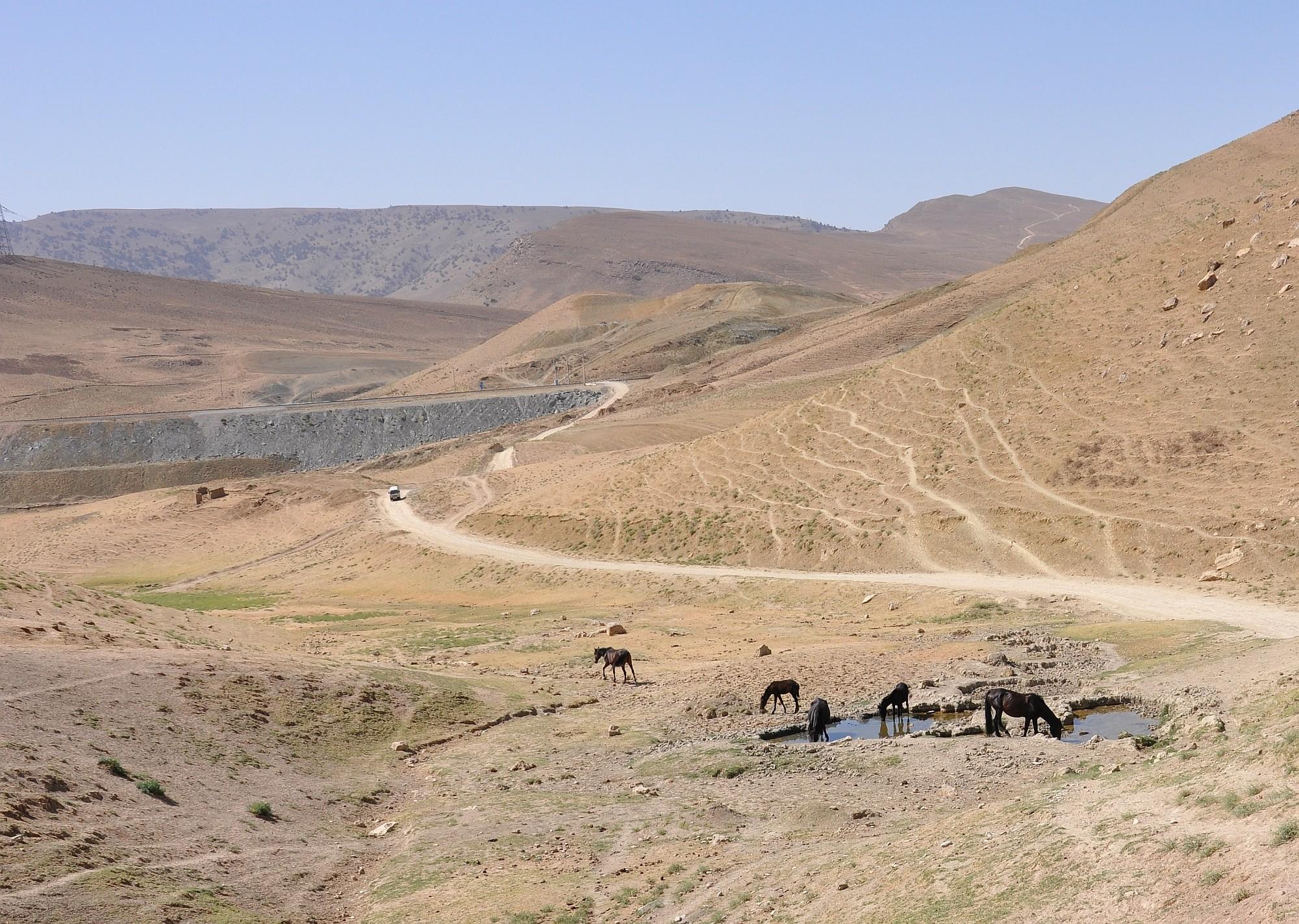 Usbekistan Opener 36 2000px