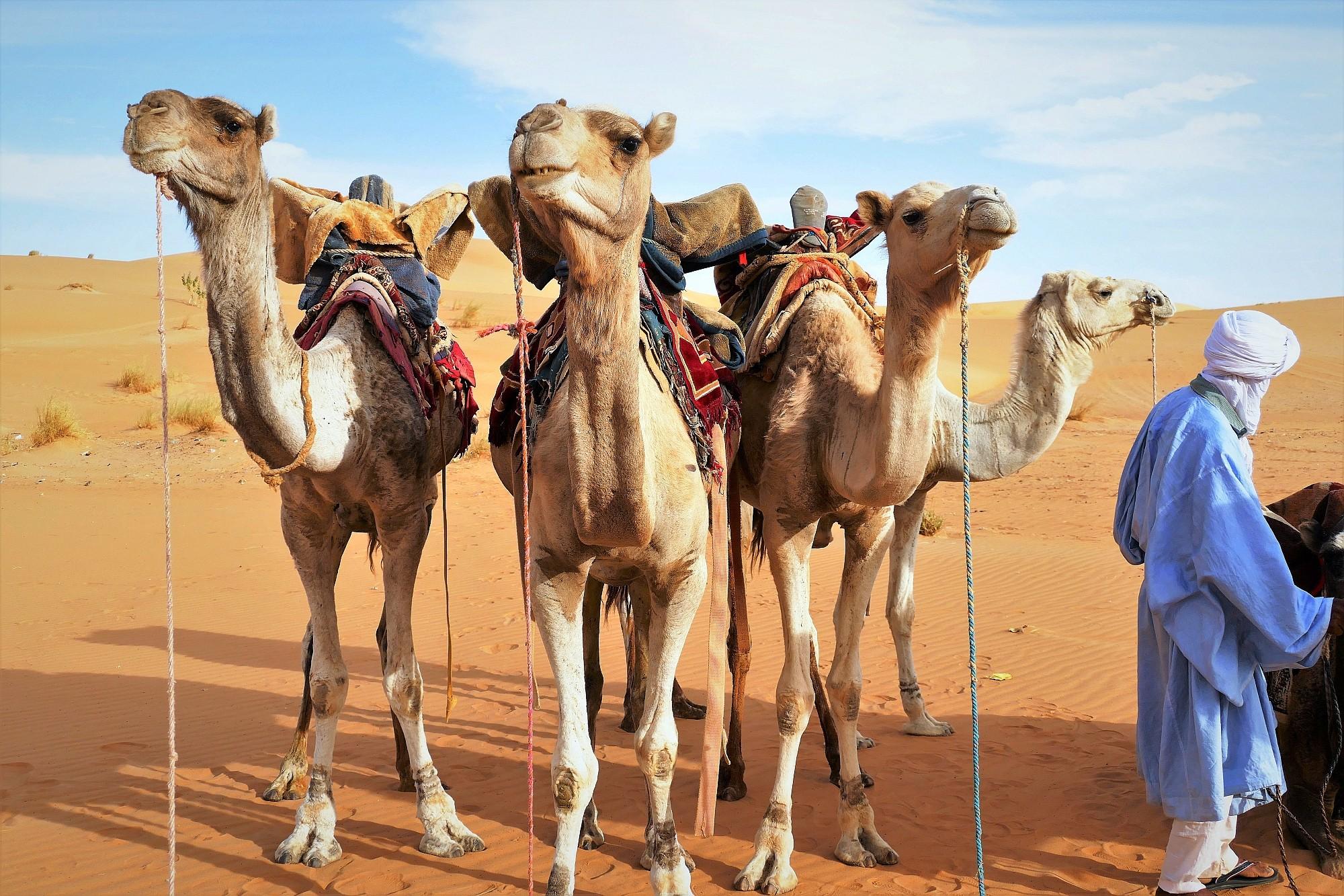 Mauretanien_036_2000px