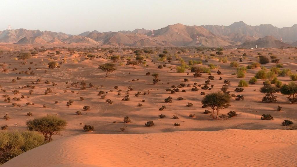Oman-47-1024px