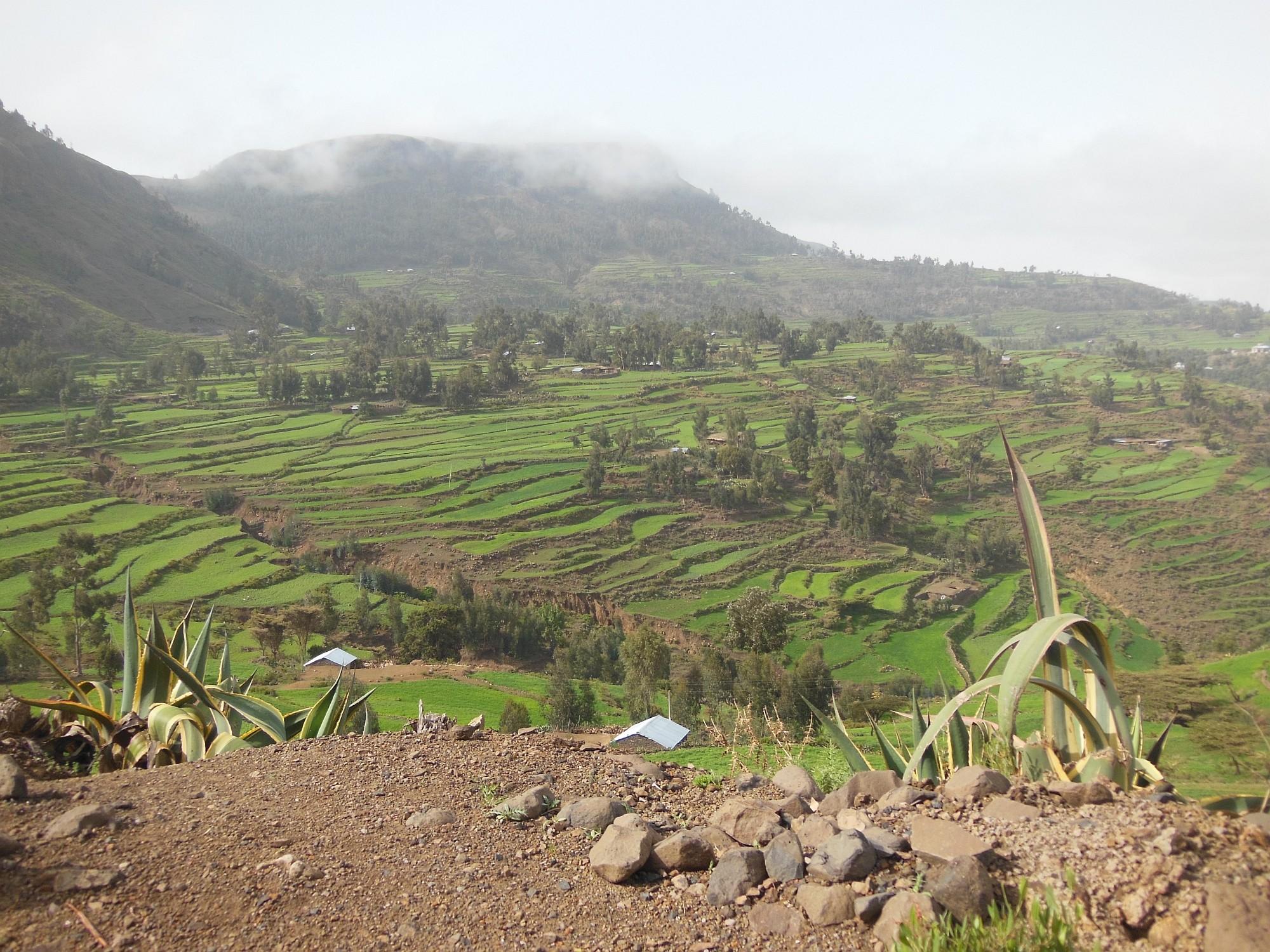 Äthiopien_new_2000px_13