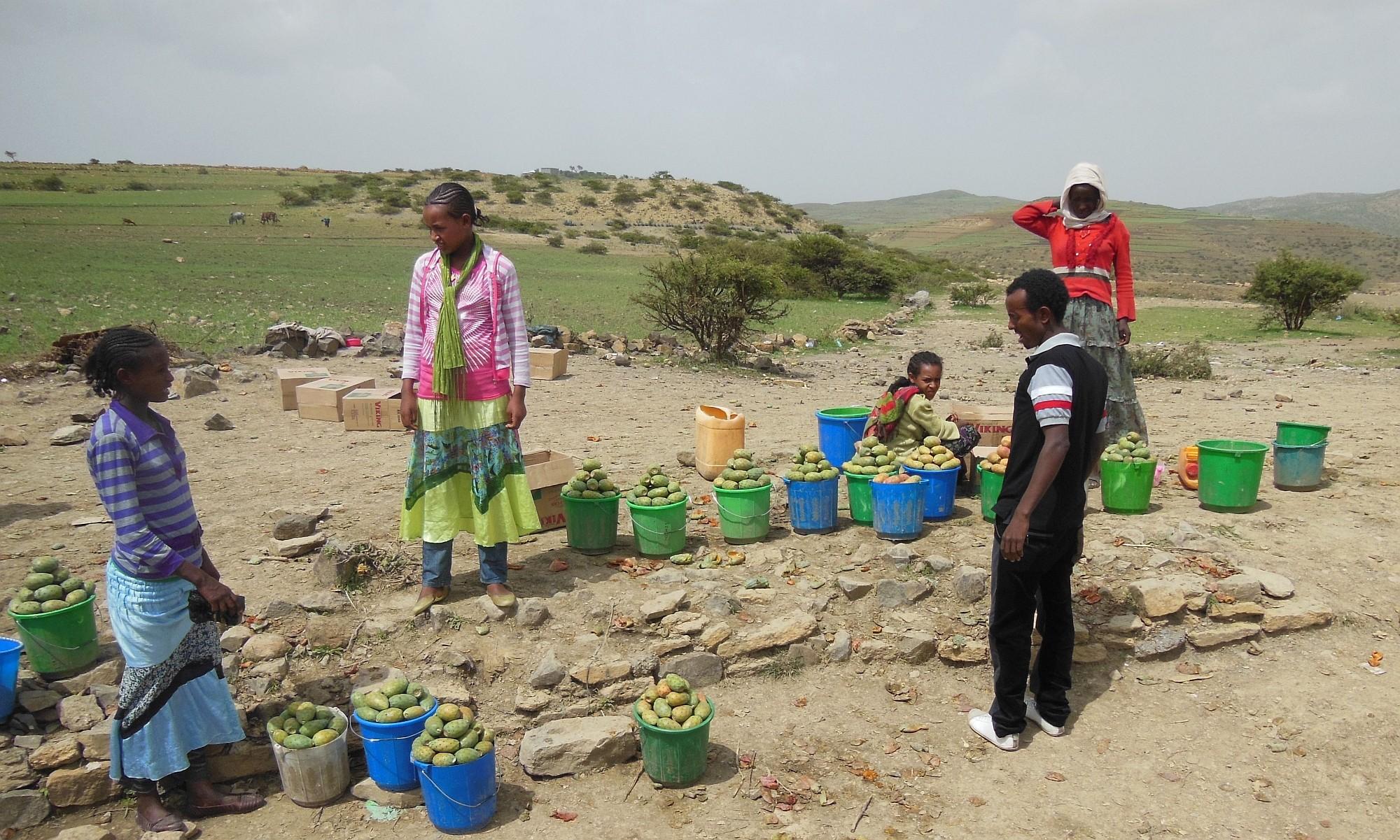 Äthiopien_new_2000px_14