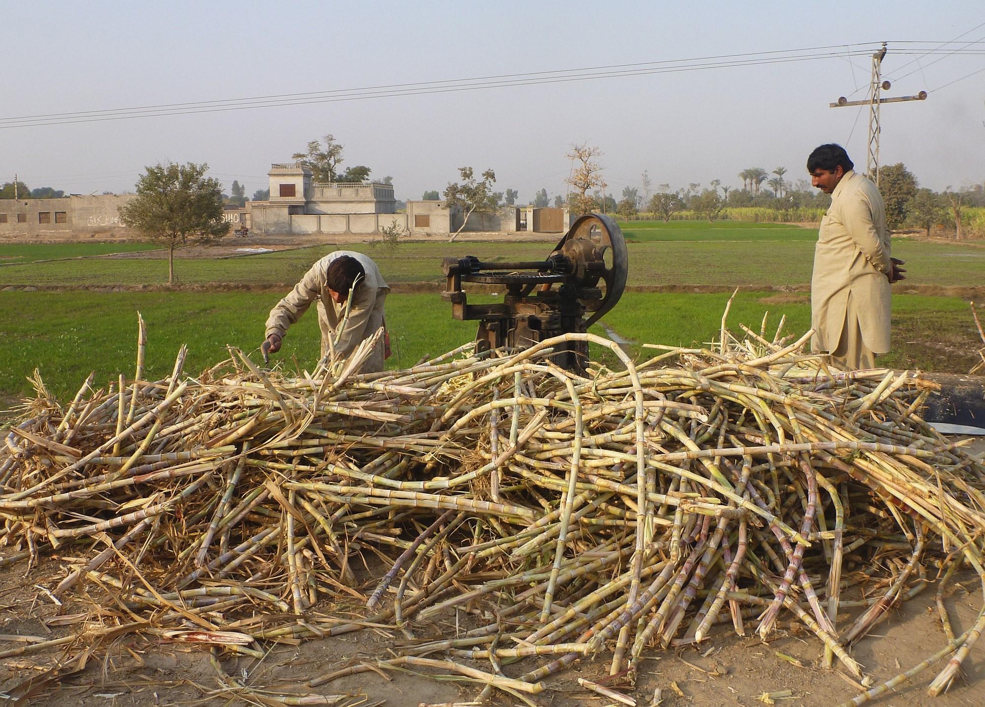 Pakistan Nord 2000px 012