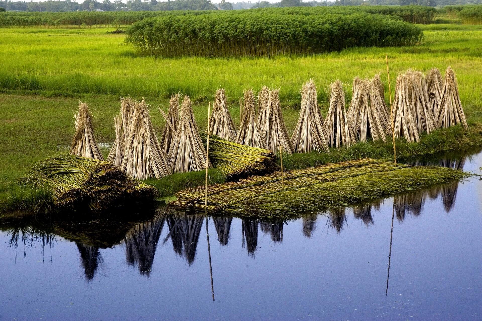 Bangladesch Slider 010 2000px