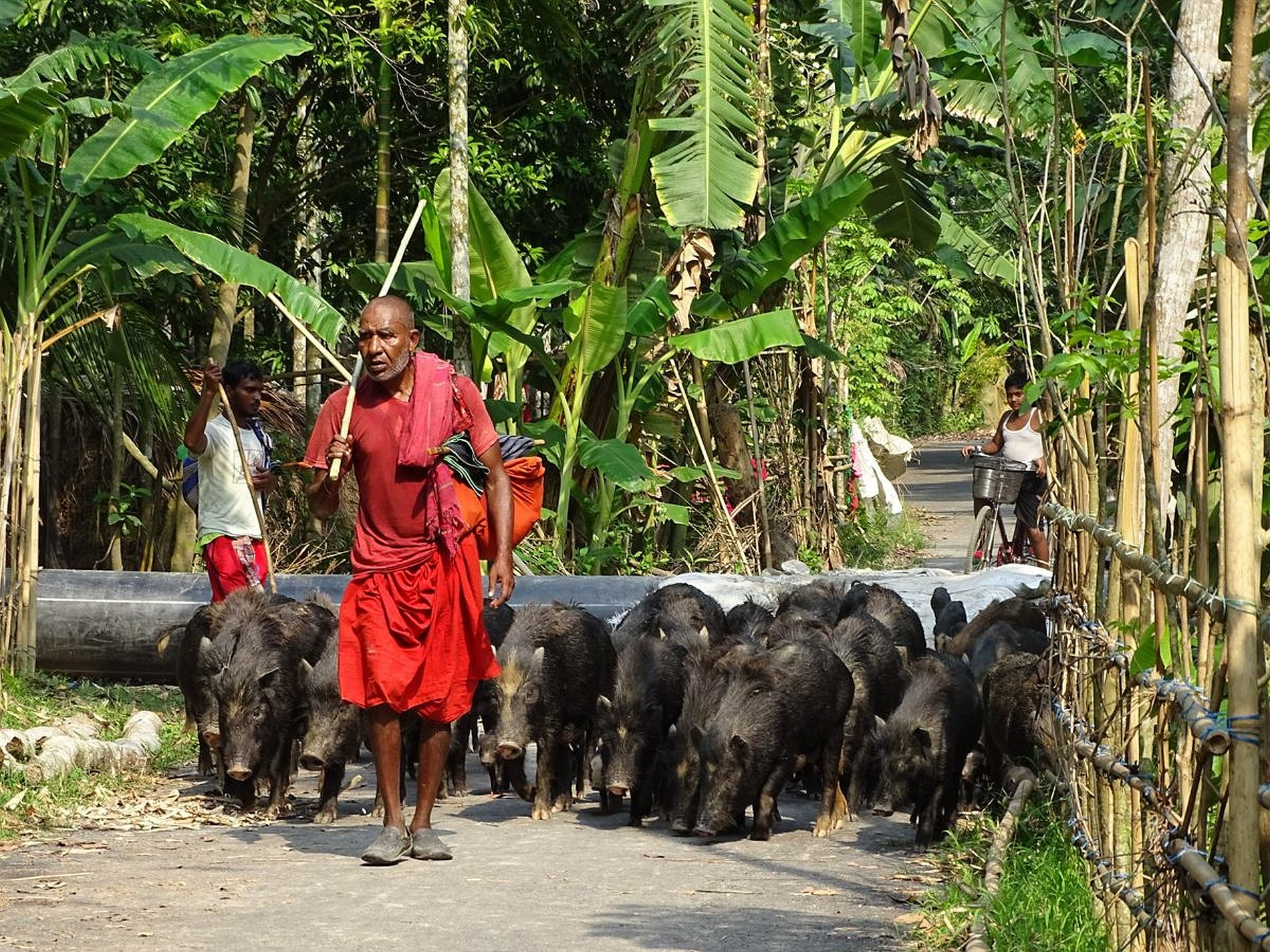 Bangladesch Slider 023 2000px
